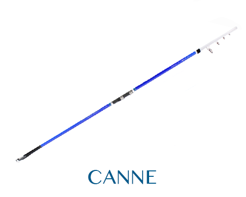 canne-surf